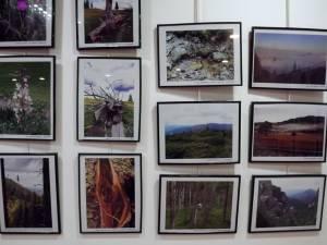 Fotografiile şi desenele din cadrul expoziţiei Ecoturism Art pot fi admirate până pe 22 septembrie la City Gallery