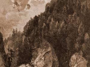 Plute pe Bistriţa – desen de Mattias Adolf Charlemont (1820-1871)