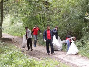 Tinerii din PSD Suceava au făcut curăţenie în parcul Şipote