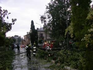 În judeţul Suceava vor fi intensificări ale vântului, regim termic scăzut şi brumă