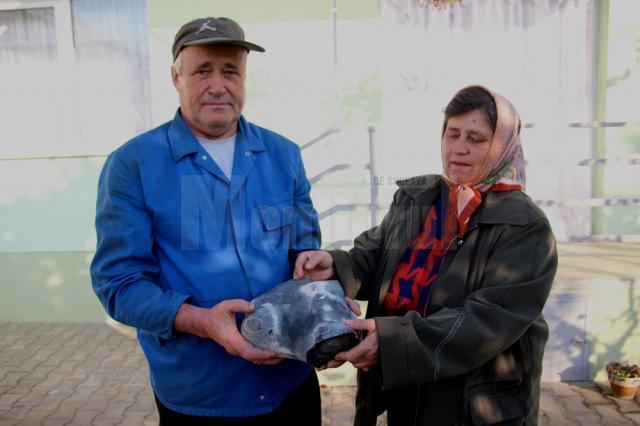Veta şi Ioan Pletosu spun că au găsit meteoritul în urma cu 25 de ani, când au mers la prăsit porumbul