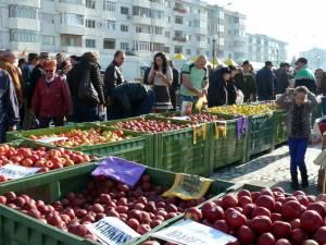 La Fălticeni sărbătoarea recoltei este o sărbătoare a mărului