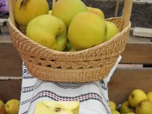 Peste 20 de tone de mere au fost vândute la Târgul Mărului din Fălticeni