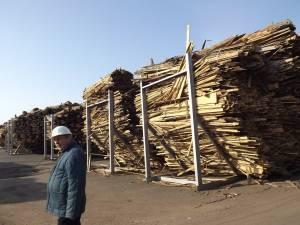 """Constantin Plăcintă: """"Necesarul de energie termică din această perioadă este acoperit integral cu cele două cazane pe biomasă puse în funcţiune"""""""
