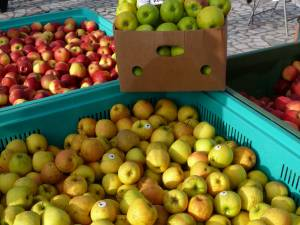 Elevii suceveni vor mânca mere