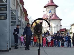 """""""Vedeta"""" pompierilor a fost Oly, câinele salvator"""