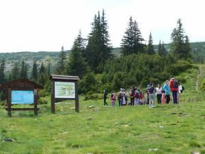 Pentru turişti, principalele atracţii au fost excursiile organizate în munţii Călimani