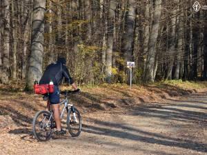Traseu bicicletă: Pătrăuți – Dragomirna