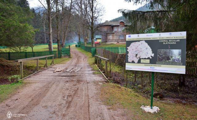 Rezervaţia forestieră Codrul secular Slătioara