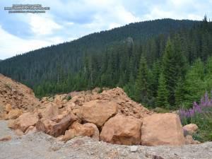 Rezervaţia forestieră Jnepeniş cu Pinus cembra