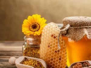 """""""Săptămîna internaţională a apicultorilor"""""""