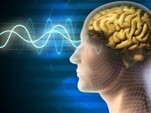 Cum este afectat creierul persoanelor care suferă de diabet?. Foto: Shutterstock
