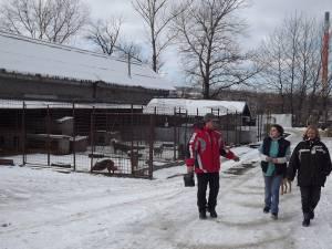 Operaţiile vor fi efectuate în cabinetele medicale amenajate în cadrul adăpostului Primăriei Suceava din Lunca Sucevei