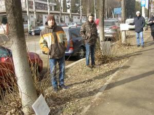 Voluntarii ecologişti au adoptat teii de pe strada Universităţii şi de pe bulevardul George Enescu