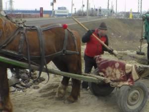 Prins de jandarmi în timp ce încărca în căruţă nisipiul folosit la lucrările de pe str. Cernăuţi