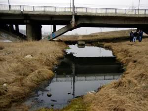 Balta imensă de sub podul de la Bazar
