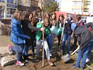 Acțiune de plantare a elevilor Scolii Nr. 4