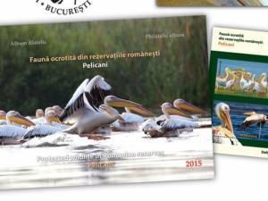 Faună ocrotită din rezervaţiile româneşti
