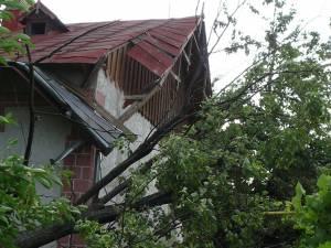La Casa Memorială Mihail Sadoveanu un tei din curte s-a prăbuşit peste imobil, afectând acoperişul casei şi o conductă de gaz metan