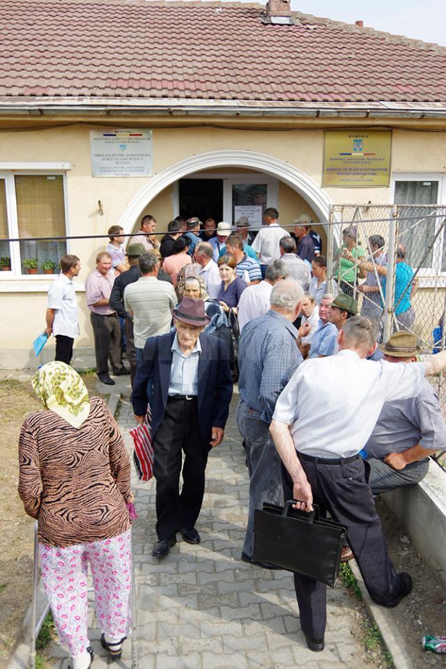 În jur de 8.000 de cereri pentru subvenţii erau depuse până ieri numai la centrul local Suceava al APIA