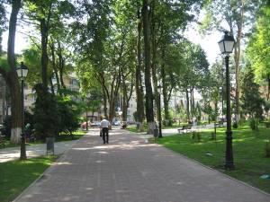 Tânărul a fost găsit inconştient, sâmbătă dimineaţă, pe o alee din parcul de peste drum de Prefectura Suceava Foto: ro.wikipedia.org