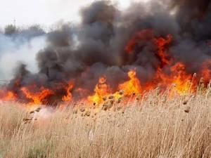 Flăcările au afectat în total 13 hectare de vegetaţie uscată