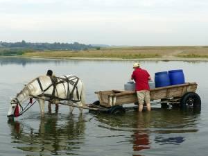 Oamenii care apă cu butoaiele din râul Suceava