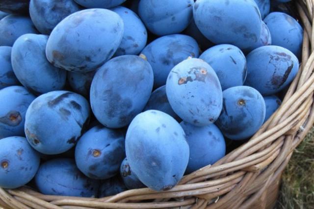 Cel mai sănătos dintre fructele toamnei. Nouă motive ca să îl incluzi în dietă