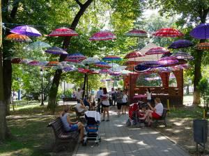 Parcul central a prins culoare