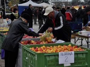 La Fălticeni se va desfăşura, în zilele de 17 şi 18 octombrie, a XII-a ediţie a Târgului Mărului