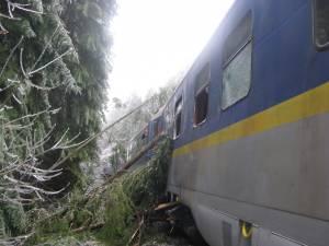Tren blocat în pădure, la gura unui tunel