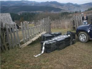 Percheziții și peste 8.000 de pachete de țigări de contrabandă reținute în zona de munte