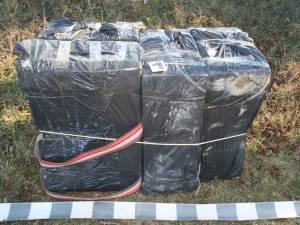 Țigări de 16.000 de euro confiscate de poliţiştii de frontieră la Vicovu de Sus