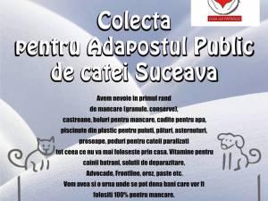 Colectă publică pentru adăpostul de câini din Lunca Sucevei