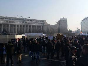 Peste 1.500 de forestieri suceveni au protestat în faţa Guvernului, din cauza blocajului de pe piaţa lemnului