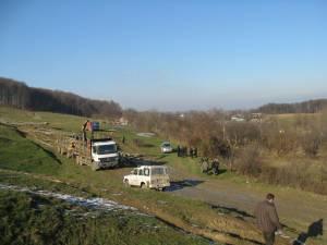 Direcţia Silvică Suceava oferă la licitaţie din fondul forestier proprietate publică a statului un volum brut de 505.651 de metri cubi de masă lemnoasă