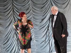 Cuplul de artişti Stela Popescu şi Alexandru Arşinel