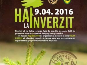Campanie de reîmpădurire în zona Valea Putnei