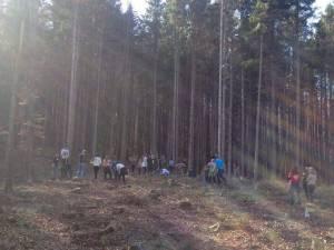 Elevi de la Palatul Copiilor au plantat puieţi la Ilişeşti