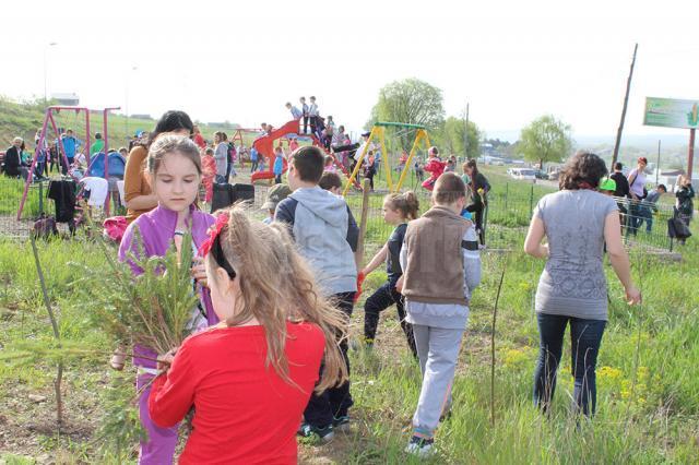 """Elevi ai Şcolii """"Jean Bart"""" au plantat puieţi de molid în cartierul Tinereţii"""
