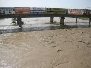 Râul Suceava