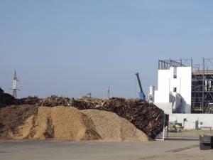 Lemnul de foc nu mai este luat în considerare la eliberarea de certificate verzi pentru producerea de energie electrică din surse regenerabile