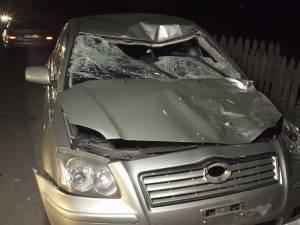 Autoturismul implicat în accidentul de pe DN 17, în care a fost ucis bătrânul care traversa drumul ducând un cal de căpăstru