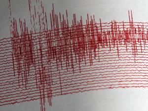 Cutremurul cu magnitudinea de 5,3 grade a fost resimţit destul de puternic şi la Suceava