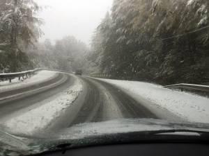 Traficul s-a desfăşurat cu dificultate mai ales prin zona pădurii de la Ilișești
