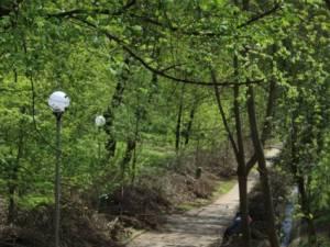 Parcul Şipote