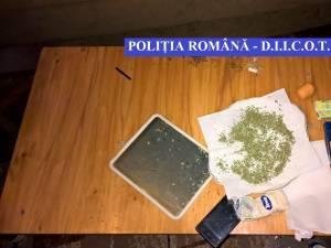 Reţea de traficanţi de droguri, vizată de 14 percheziţii în judeţele Suceava şi Mureş