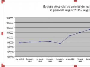 Grafic evoluţie salariaţi, Foto: Direcţia Judeţeană de Statistică Suceava