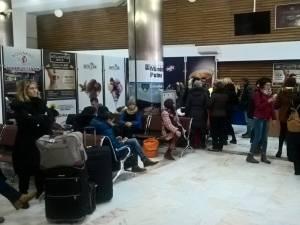 Peste 1.200 de pasageri din Ucraina au fost procesaţi pe Aeroportul Suceava