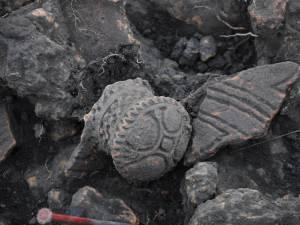 Descoperirile arheologice din situl Precucuteni I de la Baia